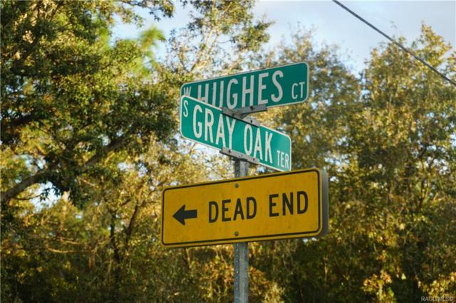 5715 S Gray Oak Terrace, Lecanto, FL 34461 (MLS #777903) :: Plantation Realty Inc.