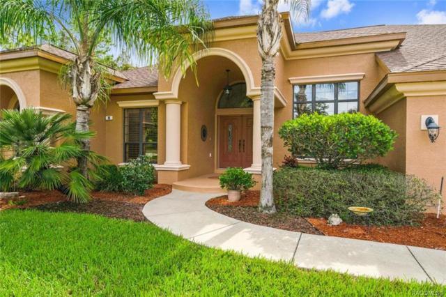 96 Woodfield Circle, Homosassa, FL 34446 (MLS #777907) :: Plantation Realty Inc.