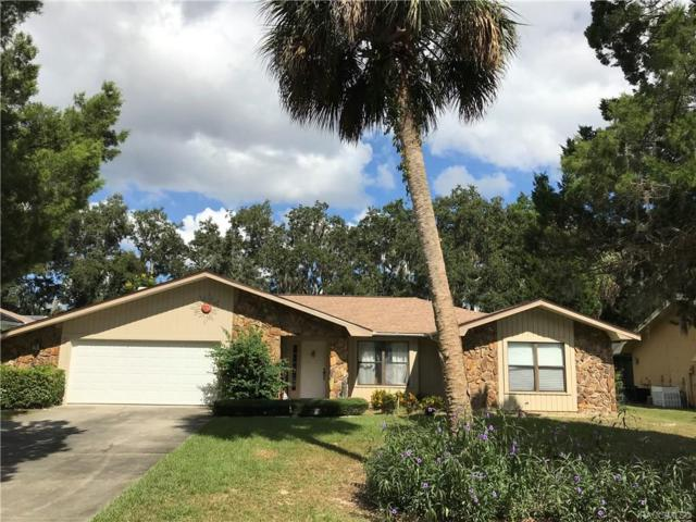 11825 W Riverhaven Drive, Homosassa, FL 34448 (MLS #777932) :: Plantation Realty Inc.
