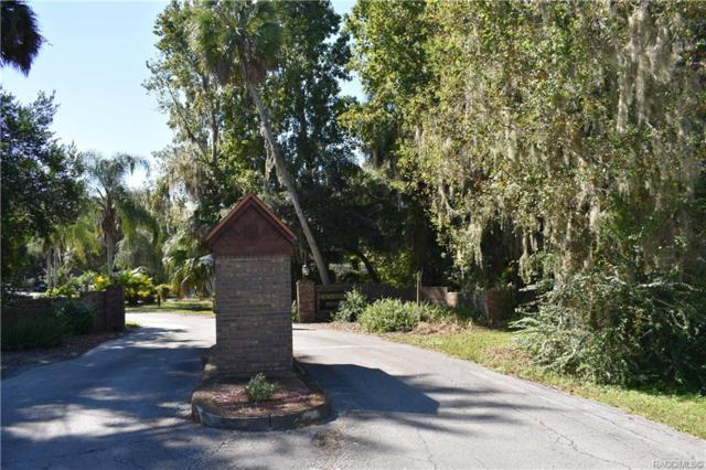 2267 S Chateau Point, Inverness, FL 34453 (MLS #778008) :: Plantation Realty Inc.