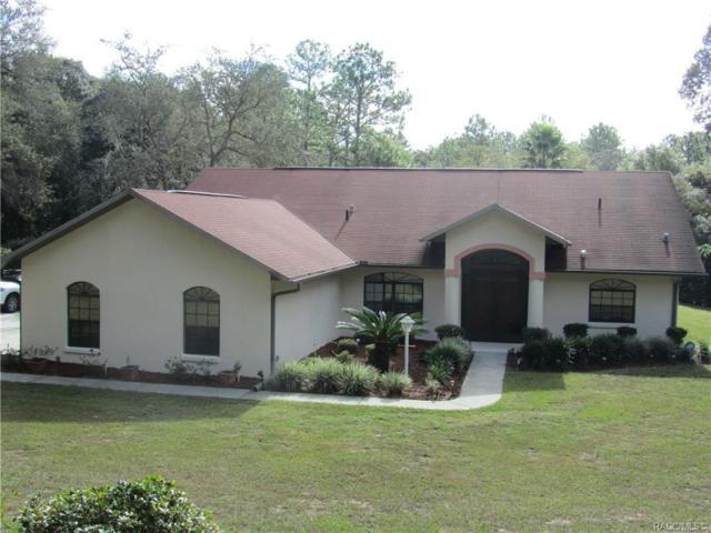 3695 N Indianhead Road, Hernando, FL 34442 (MLS #778026) :: Plantation Realty Inc.