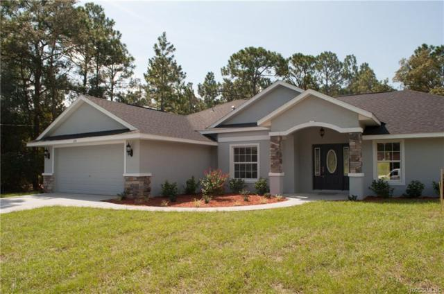 316 E Samuel Court, Hernando, FL 34442 (MLS #778086) :: Plantation Realty Inc.