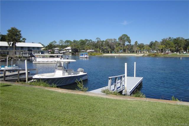 30 SE Valare Lane 101B, Crystal River, FL 34429 (MLS #778095) :: Plantation Realty Inc.
