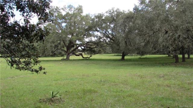 10254 E Trails End Road, Floral City, FL 34436 (MLS #778098) :: Plantation Realty Inc.
