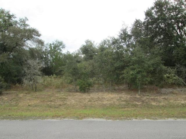824 E Overdrive Circle, Hernando, FL 34442 (MLS #778100) :: Plantation Realty Inc.