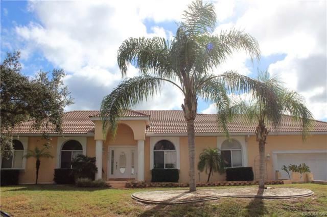 9162 W Harbor Isle Court, Crystal River, FL 34429 (MLS #778113) :: Plantation Realty Inc.