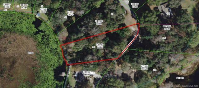 10 N Shadow Wood Drive, Inverness, FL 34450 (MLS #778122) :: Plantation Realty Inc.
