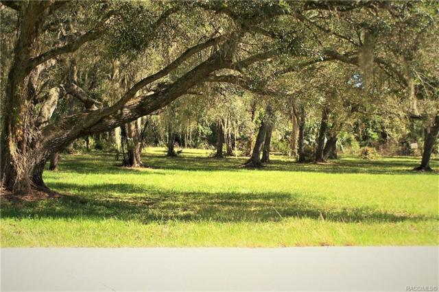 6601 & 6577 N Shorewood Drive, Hernando, FL 34442 (MLS #778125) :: Plantation Realty Inc.