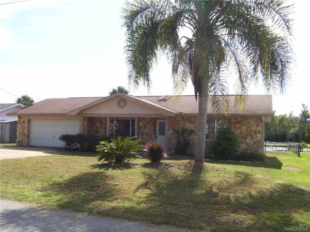 9134 E Point O Woods Drive, Inverness, FL 34450 (MLS #778153) :: Plantation Realty Inc.