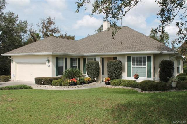 3 Deerwood Drive, Homosassa, FL 34446 (MLS #778165) :: Plantation Realty Inc.