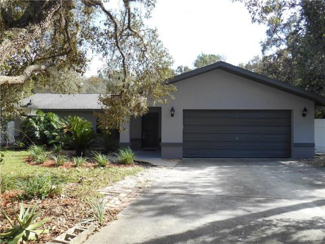 4207 S Winding Oaks Drive, Homosassa, FL 34446 (MLS #778222) :: Plantation Realty Inc.