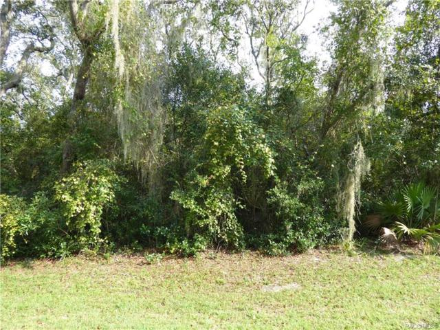 1573 N Baltic Terrace, Inverness, FL 34453 (MLS #778254) :: Plantation Realty Inc.