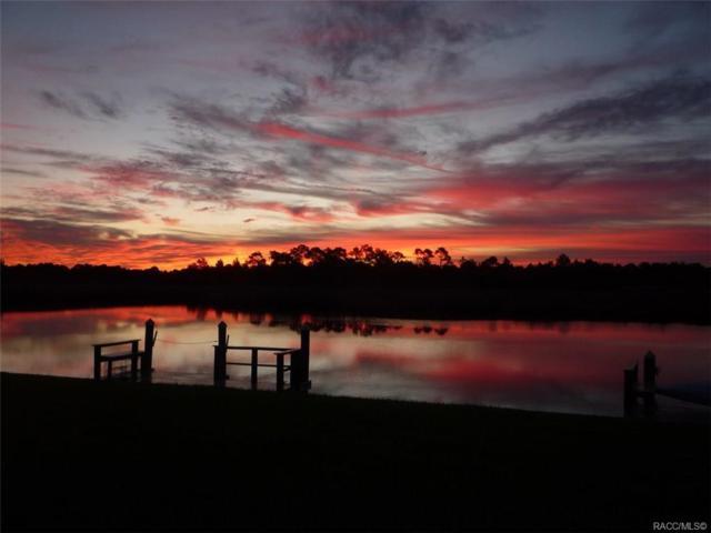 11482 W Bayshore Drive #31, Crystal River, FL 34429 (MLS #778342) :: Plantation Realty Inc.