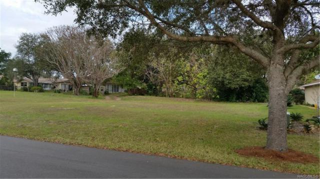 2520 N Brentwood Circle, Lecanto, FL 34461 (MLS #778386) :: Plantation Realty Inc.