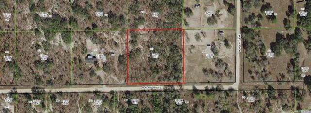 4719 W Plainfield Lane, Dunnellon, FL 34433 (MLS #778388) :: Plantation Realty Inc.