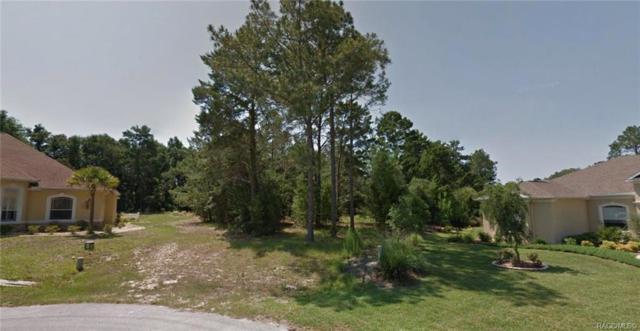 17 Woodlee Court S, Homosassa, FL 34446 (MLS #778408) :: Plantation Realty Inc.