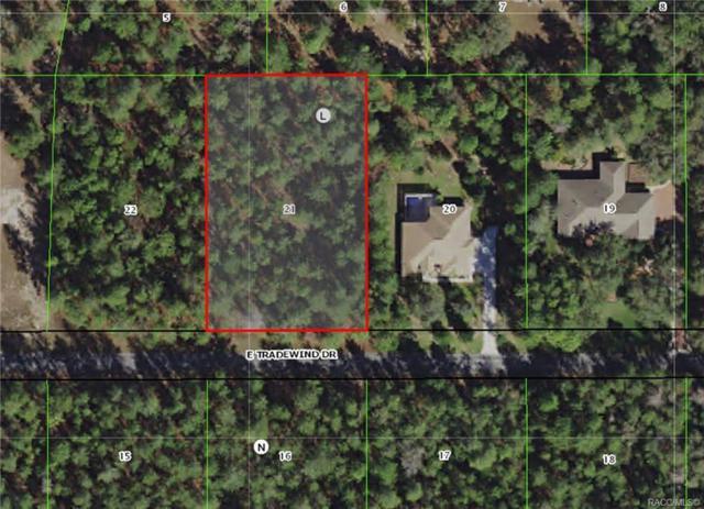 1601 E Tradewind Drive, Hernando, FL 34442 (MLS #778410) :: Plantation Realty Inc.