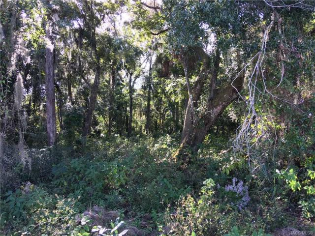 Lot 6 NW 22nd Street, Crystal River, FL 34428 (MLS #778424) :: Plantation Realty Inc.