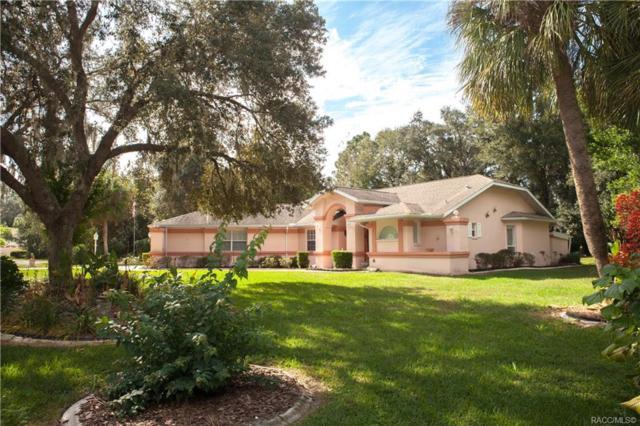 16 Douglas Court S, Homosassa, FL 34446 (MLS #778475) :: Plantation Realty Inc.