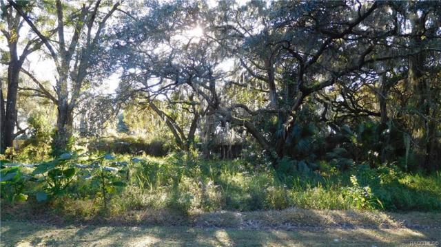 8255 E Fairway Loop, Inverness, FL 34450 (MLS #778542) :: Plantation Realty Inc.