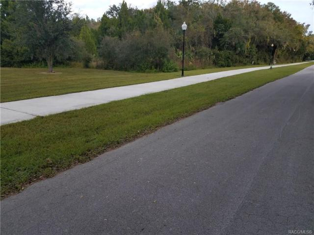 00 1st Avenue, Crystal River, FL 34429 (MLS #778547) :: Plantation Realty Inc.