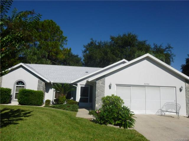 3955 E Lake Hernando Lane, Hernando, FL 34442 (MLS #778549) :: Plantation Realty Inc.