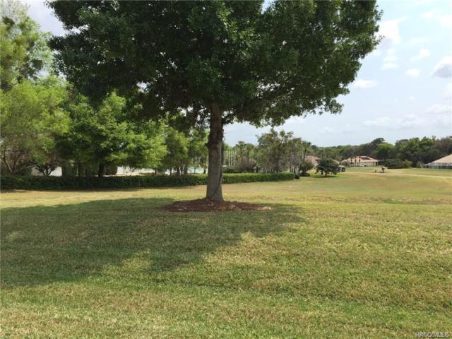 302 W Fenway Drive, Hernando, FL 34442 (MLS #778552) :: Plantation Realty Inc.