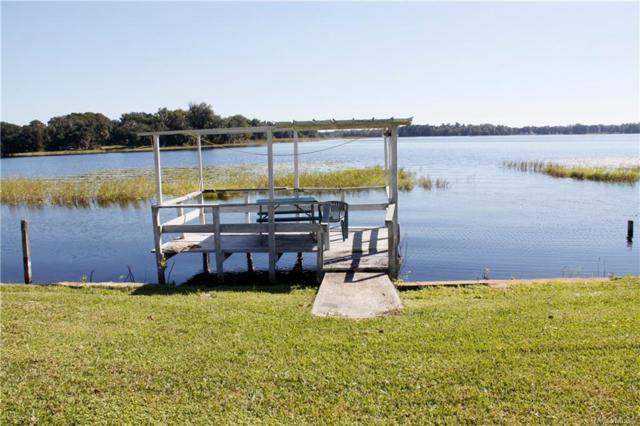 4010 E Lake Park Drive, Hernando, FL 34442 (MLS #778556) :: Plantation Realty Inc.