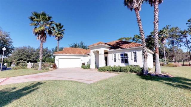 1389 N Hunt Club Drive, Hernando, FL 34442 (MLS #778564) :: Plantation Realty Inc.