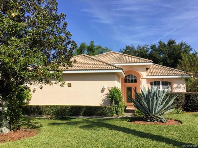 887 W Skyview Crossing Drive, Hernando, FL 34442 (MLS #778567) :: Plantation Realty Inc.