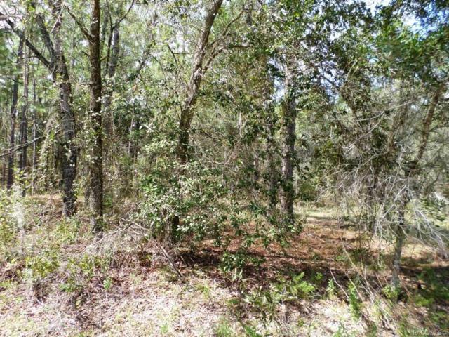 LOT 12 SW Sylvan Heights Road, Dunnellon, FL 34431 (MLS #778573) :: Plantation Realty Inc.
