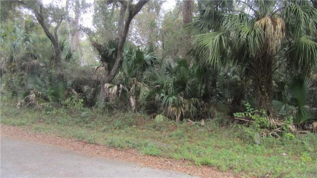 8601 N Bachelor Button Way, Crystal River, FL 34428 (MLS #778612) :: Plantation Realty Inc.