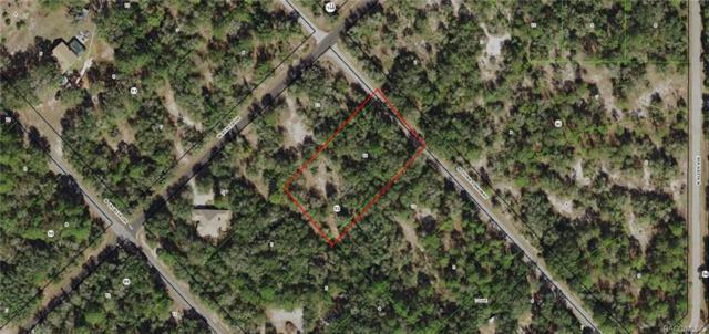 9358 N China Pink Way, Crystal River, FL 34428 (MLS #778613) :: Plantation Realty Inc.