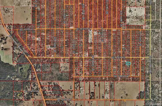 LOT 3 SE 138 Avenue, Dunnellon, FL 34431 (MLS #778625) :: Plantation Realty Inc.