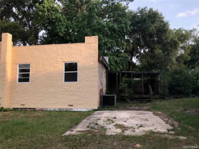3352 E Buffalo Lane, Hernando, FL 34442 (MLS #778635) :: Plantation Realty Inc.