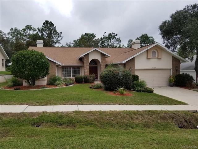 6174 N Misty Oak Terrace, Beverly Hills, FL 34465 (MLS #778681) :: Plantation Realty Inc.