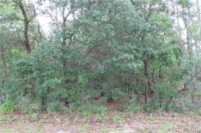 5810 W Oak Park Boulevard, Homosassa, FL 34446 (MLS #778719) :: Plantation Realty Inc.