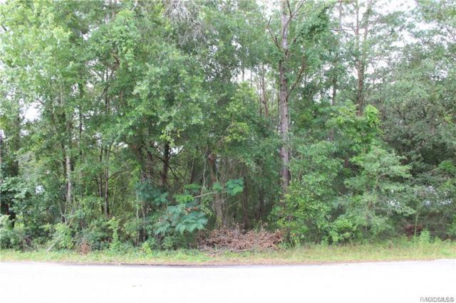 6729 W Oak Park Boulevard, Homosassa, FL 34446 (MLS #778720) :: Plantation Realty Inc.