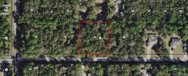 2983 E Marcia Street, Inverness, FL 34453 (MLS #778739) :: Plantation Realty Inc.