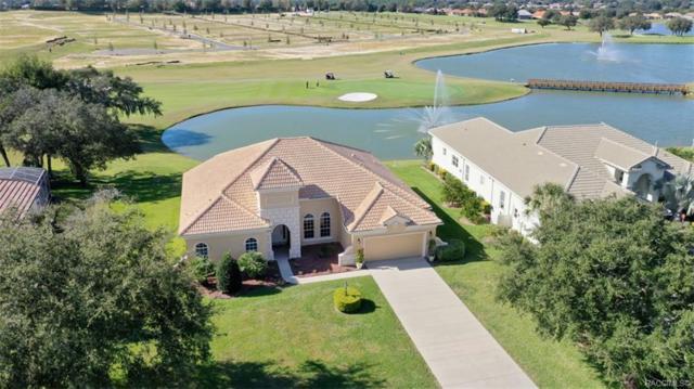 1933 N Eagle Chase Drive, Hernando, FL 34442 (MLS #778763) :: Plantation Realty Inc.
