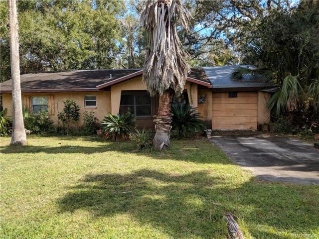 1075 N Fan Palm Point, Crystal River, FL 34429 (MLS #778764) :: Plantation Realty Inc.