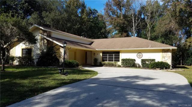 26 Mastic Court W, Homosassa, FL 34446 (MLS #778779) :: Plantation Realty Inc.