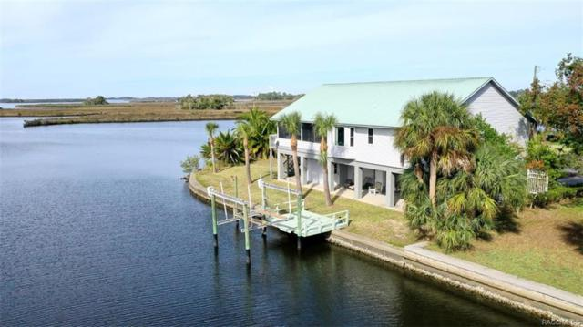 11884 W Coquina Court, Crystal River, FL 34429 (MLS #778796) :: Plantation Realty Inc.
