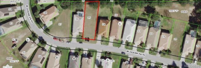 491 W Doerr Path, Hernando, FL 34442 (MLS #778812) :: Plantation Realty Inc.