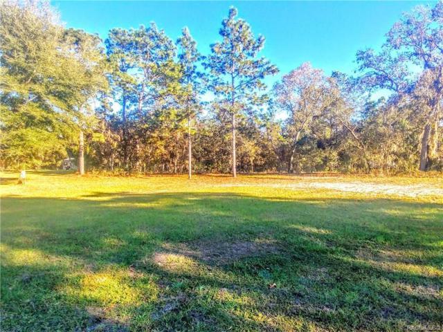 4435 N Capistrano Loop, Beverly Hills, FL 34465 (MLS #778814) :: Plantation Realty Inc.