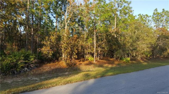 4362 N Saddle Drive, Beverly Hills, FL 34465 (MLS #778833) :: Plantation Realty Inc.