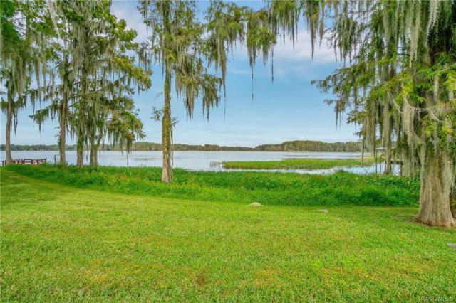 534 San Remo Circle, Inverness, FL 34450 (MLS #778843) :: Pristine Properties