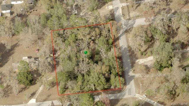 6585 W Orleans Lane, Dunnellon, FL 34433 (MLS #778852) :: Plantation Realty Inc.