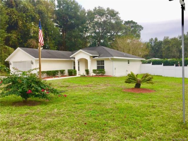 415 Daisy Lane, Inverness, FL 34452 (MLS #778858) :: Plantation Realty Inc.