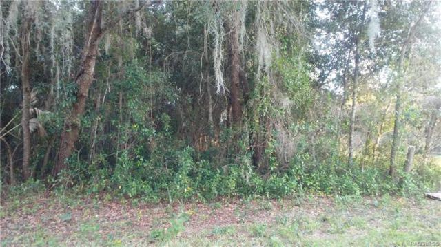 626 La Salle Avenue, Inverness, FL 34452 (MLS #778893) :: Plantation Realty Inc.